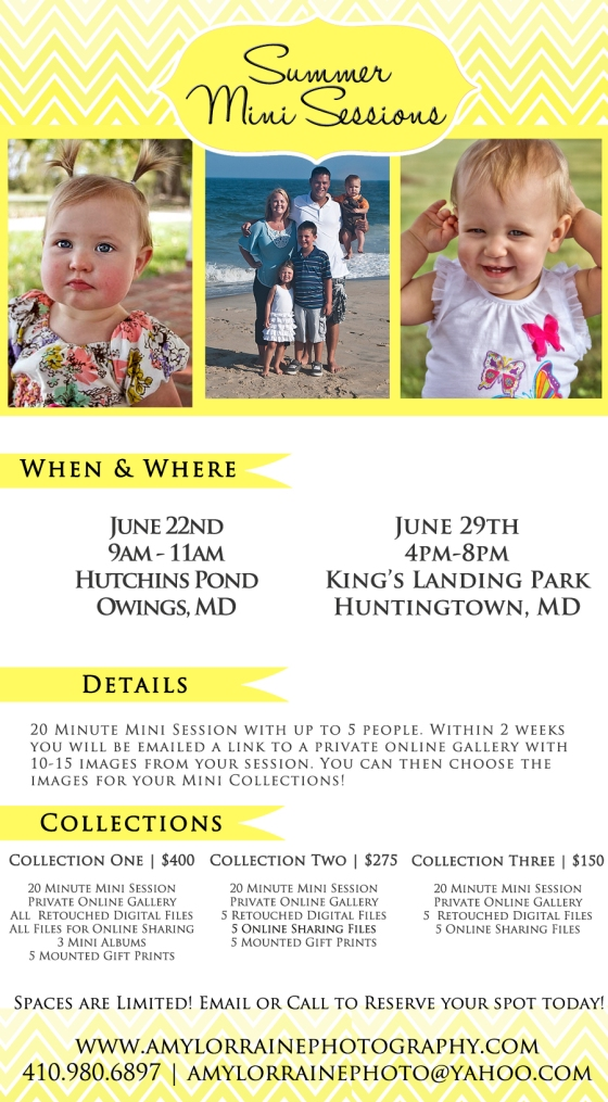 Summer Mini Sessions are here!