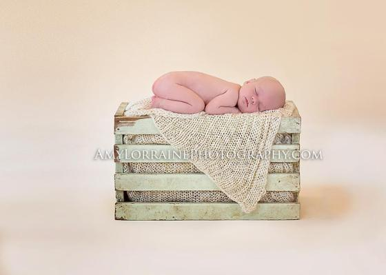 Newborn Photography | www.amylorrainephotography.com