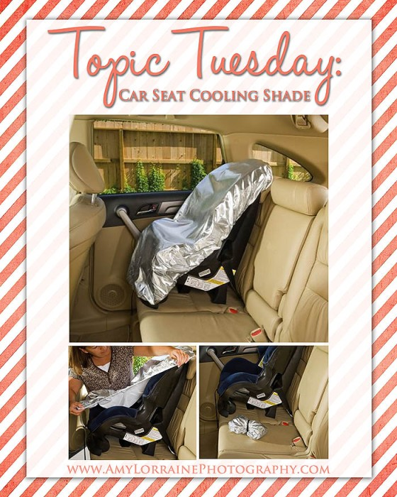 Topic Tuesday | Car Seat Cooling Shade | www.amylorrainephotography.com