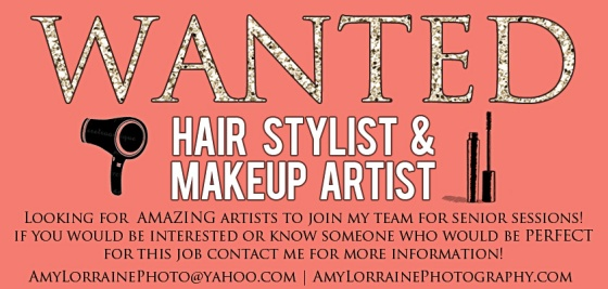 Maryland Photographer looking for Hair Stylist & Makeup Artist | www.amylorrainephotography.com